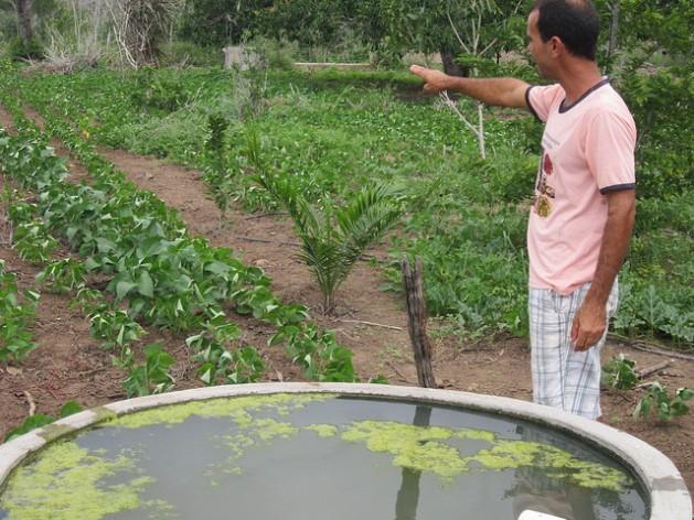 Abel Manto mostra em sua propriedade um tanque de água de chuva e os feijões que planta apesar dos anos de persistente seca. Foto: Mario Osava/IPS