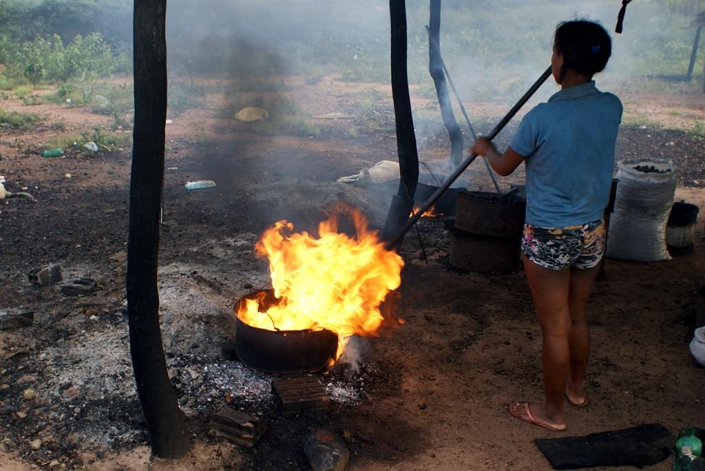 Meninas, meninos, pais, mães e famílias inteiras se misturam para organizar a produção das castanhas