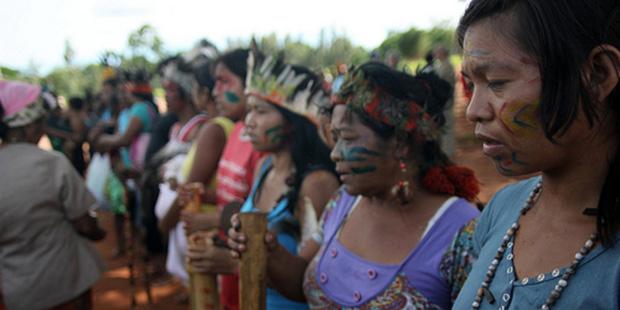indigenas_guarany_cmi_capa