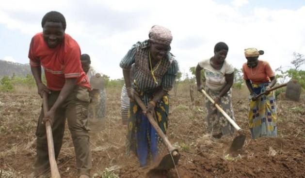 http://www.ipsnoticias.net/2013/12/campesinos-de-mozambique-con-miedo-modernizacion-la-brasilena/