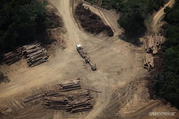 Desmatamento no Estado do Pará. Foto:  © Rodrigo Baleia / Greenpeace