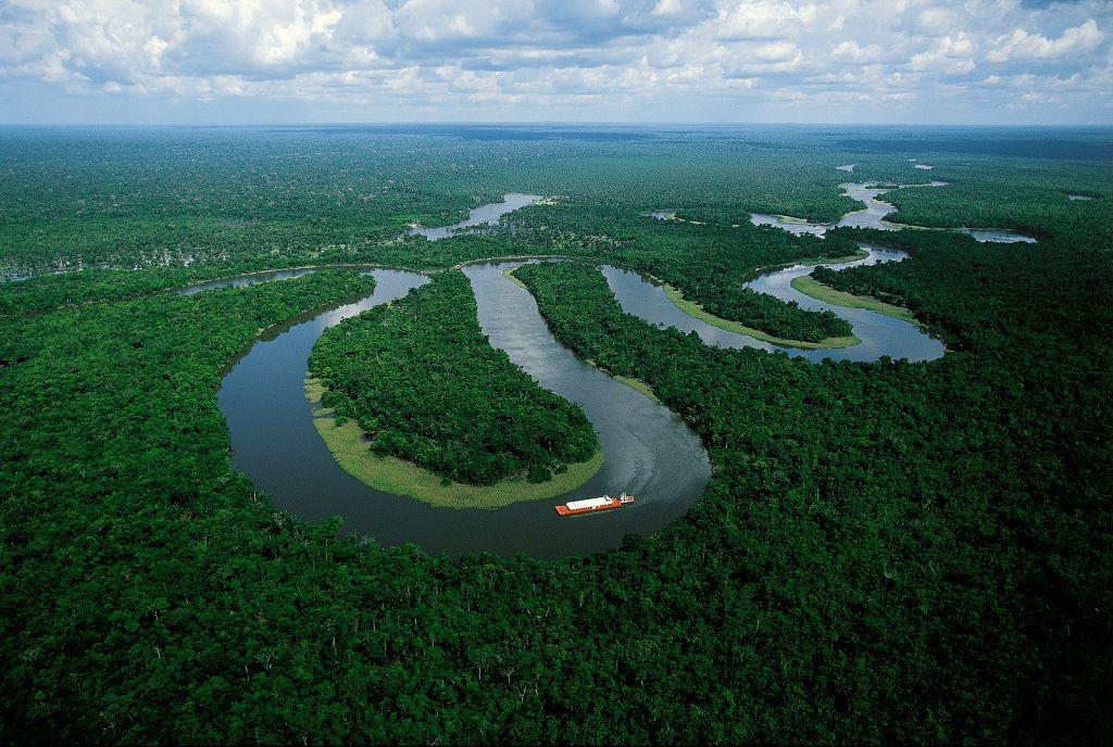 Desmatamento: ação começa a dar resultado. Foto: Jefferson Rudy/Arquivo MMA