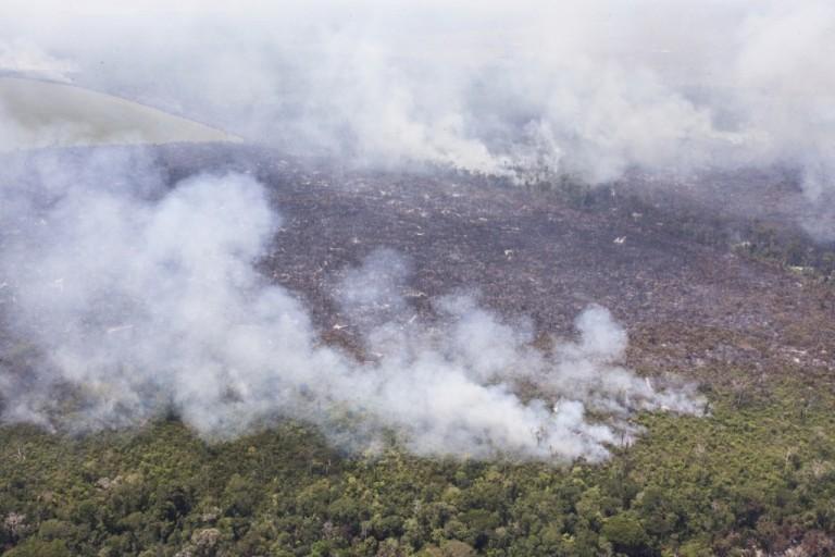 Queimada na Amazônia. Foto: Greenpeace
