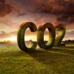 Instituto Invepar neutraliza emissões de CO2