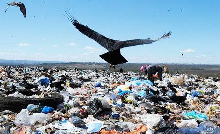 Resíduos sólidos: a mídia precisa explicar; o cidadão, entender e o poder público, atuar