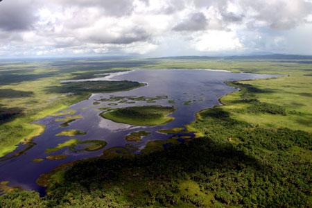 Pacto pela Amazônia