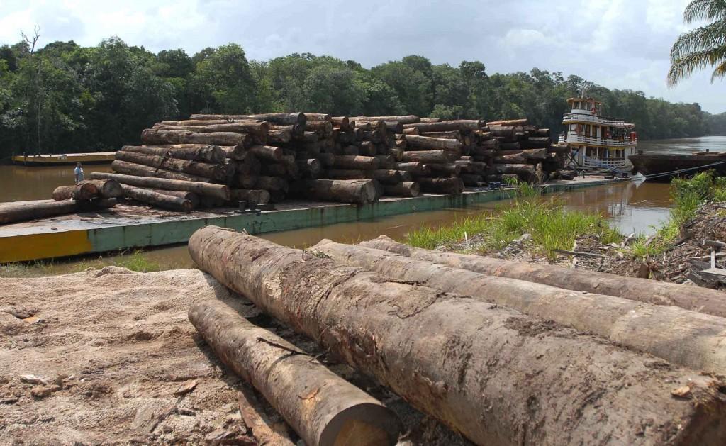 Desmatamento da Amazônia. Foto: Wilson Dias/ Agência Brasil (21/07/2014)