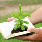 Curso inédito dá dicas de como se inscrever em premiações socioambientais