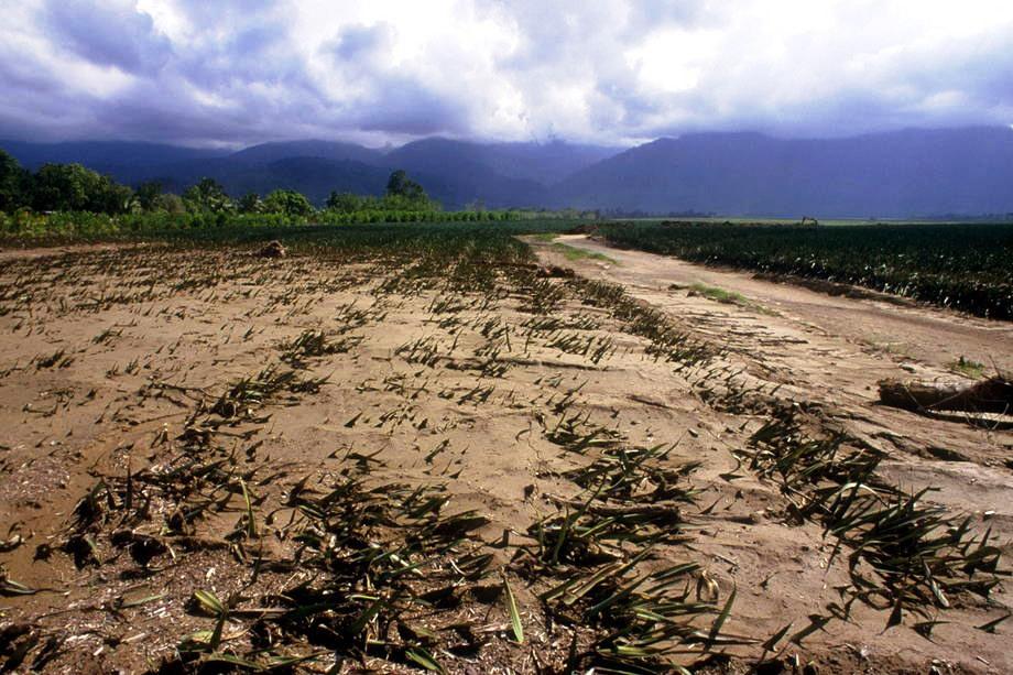 As alterações climáticas têm implicações graves para a agricultura e a segurança alimentar. Foto: FAO / L. Dematte