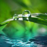 Coca-Cola Company antecipa em cinco anos meta de neutralidade em água no mundo