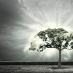 """Jim Robbins: """"Precisamos entender o mundo a nossa volta"""""""