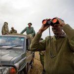 O mundo se une no combate a crimes contra a vida selvagem