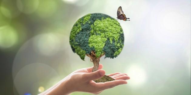 Nossa biodiversidade no centro da atenção