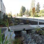 Depois dos parklets, os jardins de chuva