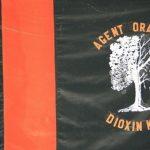 Pedida mais ajuda dos Estados Unidos para limpar agente laranja no Vietnã
