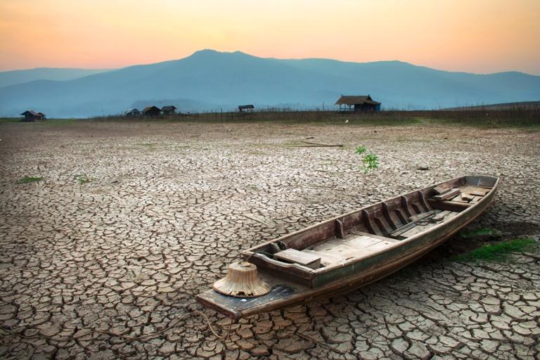 Avanços obtidos nas últimas décadas, como aumento da expectativa de vida, podem ser revertidos pela rápida e contínua perda da biodiversidade e dos serviços ecossistêmicos, indicam relatórios globais. Foto: Shutterstock