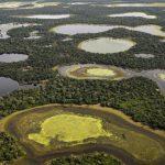 O Pantanal conquista a Suécia