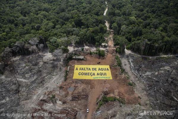 As florestas são essenciais para a regulação do clima e para a produção de chuvas. Foto de enorme área desmatada, em Roraima. Foto: © Greenpeace/Marizilda Cruppe