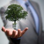 França emerge como líder em 'financiamento verde'