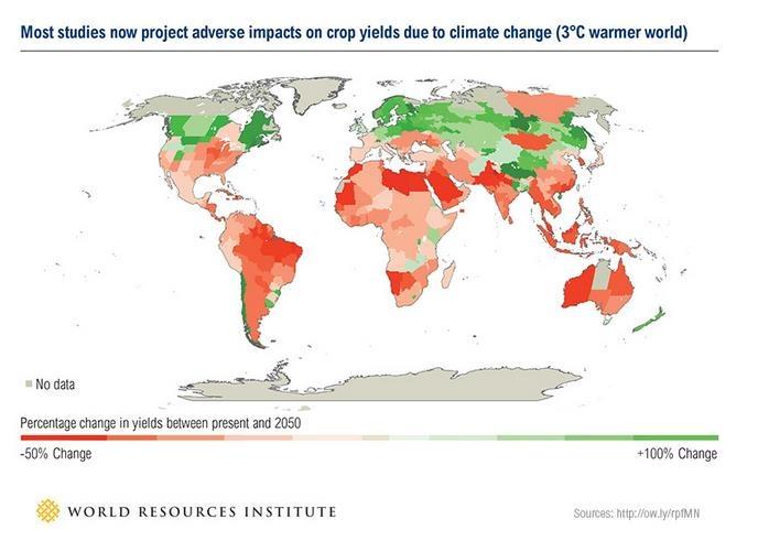 Evolução das safras para 2050 em um mundo com um acréscimo de mais 3ºC na temperatura média. Fonte - WRI