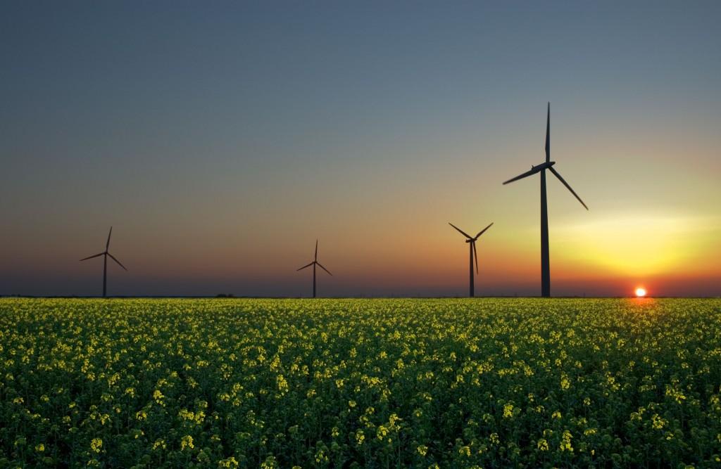A formação permite que os alunos sejam capazes de desenvolver projetos de energia renovável. Foto: Wikicommons/Jürgen (CC