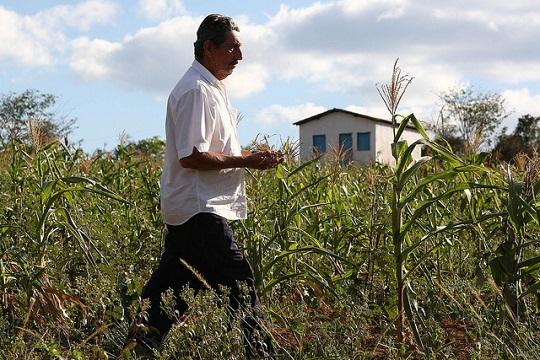 Judicael Oliveira, pequeno produtor de Baixa Grande. Foto: Mateus Pereira/Secom