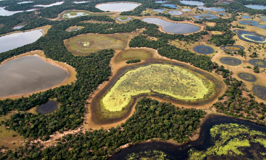 São consideradas áreas úmidas os pântanos, charcos, turfas ou locais de acúmulo de água, permanente ou temporário. Foto: © Adriano Gambarini/WWF-Brasil