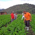 América Latina e Caribe criam rede pública pioneira de abastecimento e comercialização de alimentos
