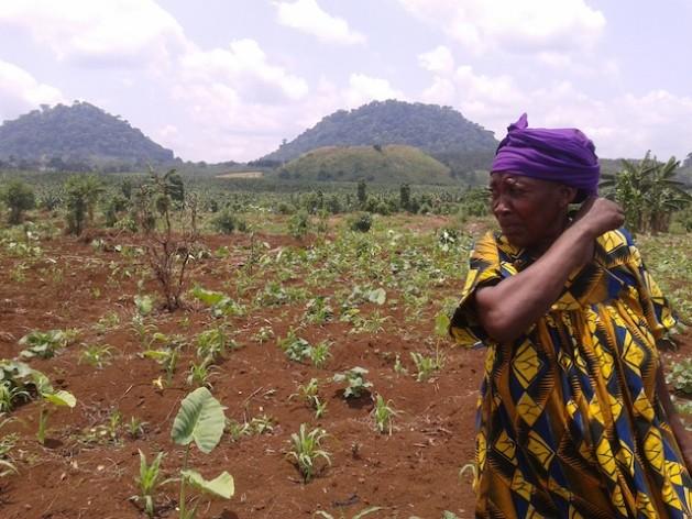 Ndomi Magareth cultiva feijões em seu pequeno terreno em Njombe, na região costeira Litoral de Camarões. Foto: Monde Kingsley Nfor/IPS