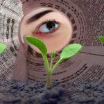 Jornalismo e Mídias Ambientais: passado, presente, futuro – uma breve visão histórica