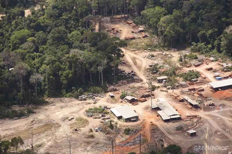 Madeireira Iller, envolvida com o comércio de madeira ilegal, no Pará. Foto: © Greenpeace/Otávio Almeida