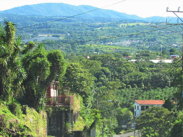 Vista de reservas privadas na província de Heredia, na Costa Rica. Em 200 hectares de uma delas será realizado um projeto-piloto de bônus de carbono, graças a uma doação de seu proprietário. Foto: Fabíola Ortiz/IPS