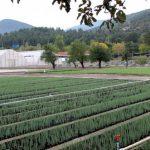 Fundos privados, risco na recuperação da terra