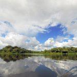 A Amazônia tem um recado para você!