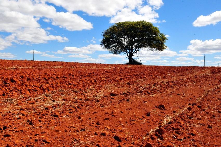 A finalidade do fundo é financiar projetos, estudos e empreendimentos para a redução dos impactos e adaptação aos efeitos das mudanças climáticas. Foto: Paulo de Araújo/MMA