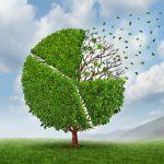 Fórum debate economia e clima