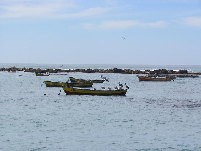 As barcas descansam em uma pequena baía de Algarrobo, no Chile, à espera dos pescadores artesanais que saem ao entardecer para colocar suas iscas mar adentro. Eles voltam ao amanhecer do dia seguinte e recolhem a captura do dia, em uma atividade de séculos agora ameaçada pela superexploração e por leis a favor da pesca industrial. Foto: MarianellaJarroud/IPS