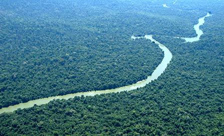 Floresta amazônica: área importante para implantação do Redd. Foto: Jeferson Rudy/MMA