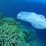 Declarada guerra ao plástico nos oceanos