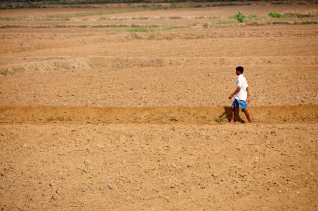 A terra rachada se tornou muito comum nas zonas áridas do Sri Lanka. Foto: AmanthaPerera/IPS