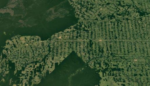 Desmatamento encurrala chuva na Amazônia