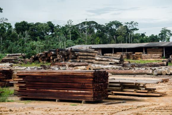 Toras de madeira em pátio de serraria próxima ao município de Colniza, noroeste do Mato Grosso. Marcelo Camargo/Agência Brasil