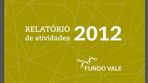 RElatório Fundo Vale 2013