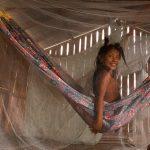 Os ancestrais Katxuyana ajudaram os escravos fugidos a se ambientarem na floresta