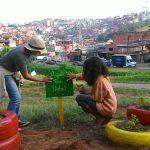 Coletivo PermaSampa fortalece permacultura urbana em São Paulo