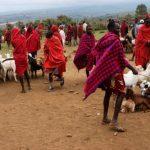 Direitos indígenas e a mudança climática
