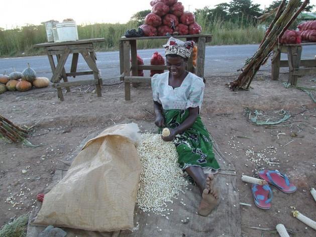 Com mais apoio de extensão, as agricultoras podem aumentar sua produtividade e melhorar a segurança alimentar na África. Foto: Busani Bafana/IPS