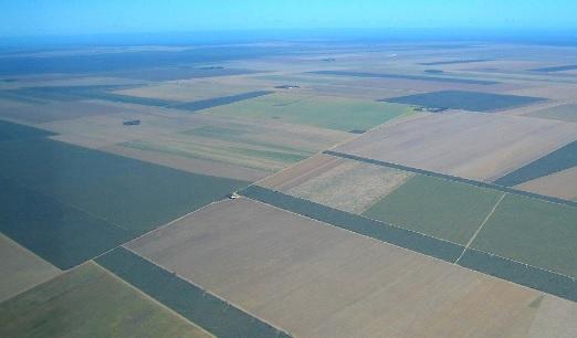 Agricultura em área desmatada de cerrado no Piauí, região do Mapitoba: agronegócio quer operar sem licença. Foto: Panoramio/Creative Commons
