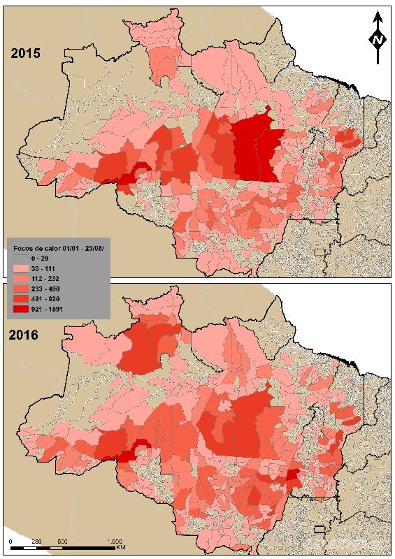 O número de focos de incêndios disparou no último ano no Amazonas.