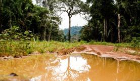 Área degradada no município de Colniza, noroeste de Mato Grosso. Foto: Marcelo Camargo/Agência Brasil